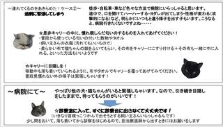IMG_E2061.JPG